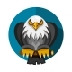 RAmerican Eagle - GraphicRiver Item for Sale