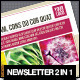 Newsletters PACK 2 in 1 - GraphicRiver Item for Sale