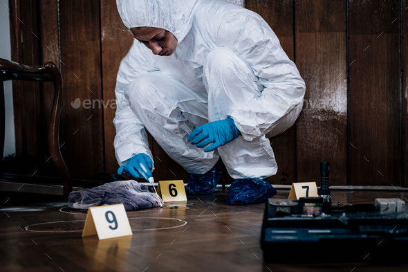 Forensic Expert searching for clues - Stock Photo - Images