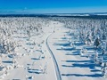 Aerial view of white winter forest with snow covered trees and rural road in Finland - PhotoDune Item for Sale