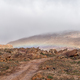 Road between  Matjiesrivier and Wupperthal in the Cederberg Mountains - PhotoDune Item for Sale