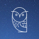 Northern Owl - GraphicRiver Item for Sale