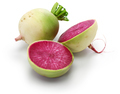 watermelon radish, chinese red meat radish - PhotoDune Item for Sale