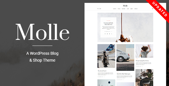 Molle - A WordPress Blog & Shop Theme - Blog / Magazine WordPress