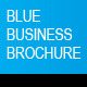 Blue Business Brochure A4 InDesign Template - GraphicRiver Item for Sale