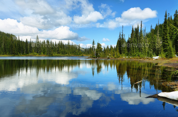 Scenic view of reflection lake in Mount Rainier - Stock Photo - Images