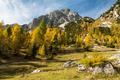 Sunny day in Slovenia Julian Alps - PhotoDune Item for Sale