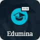 Edumina - LMS & Education WordPress Theme - ThemeForest Item for Sale