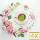Tea Cup Logo Reveal - VideoHive Item for Sale