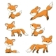 Collection of Some Foxes - GraphicRiver Item for Sale
