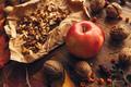 Apple and walnut, autumn abundance - PhotoDune Item for Sale