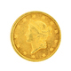 Gold Dollar Coin - PhotoDune Item for Sale