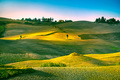Volterra panorama, rolling hills, trees and green fields at suns - PhotoDune Item for Sale