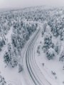 Aerial view of forest covered with snow in Finland, Lapland. - PhotoDune Item for Sale
