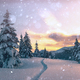 Dramatic wintry scene with snowy trees - PhotoDune Item for Sale