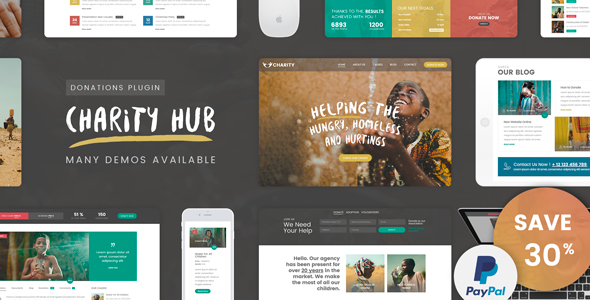 Charity Foundation - Charity Hub WP Theme - Charity Nonprofit
