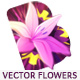 Vector Flowers - VideoHive Item for Sale
