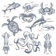 Sea Animal Isolated Sketch Set of Seafood and Fish - GraphicRiver Item for Sale