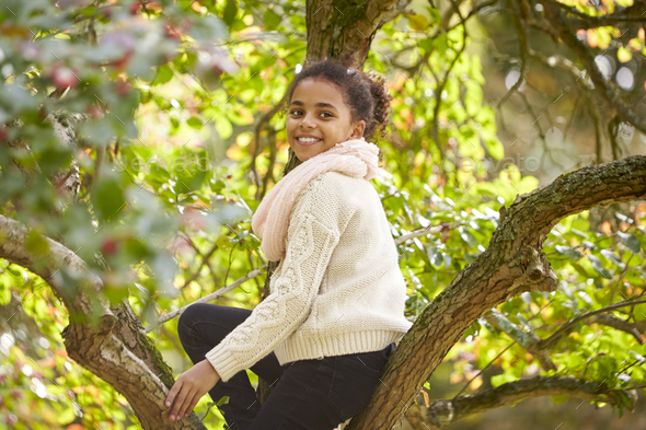 Young girl sitting in an Autumn tree, turning and smiling to camera, side view - Stock Photo - Images