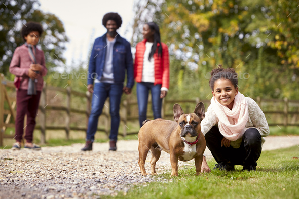 Mixed race girl squatting to pet her dog during a family walk in the countryside - Stock Photo - Images
