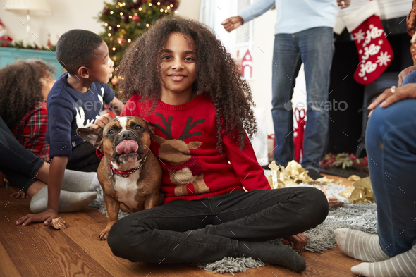 Portrait Of Girl With Pet French Bulldog Celebrating Family Christmas At Home Together - Stock Photo - Images