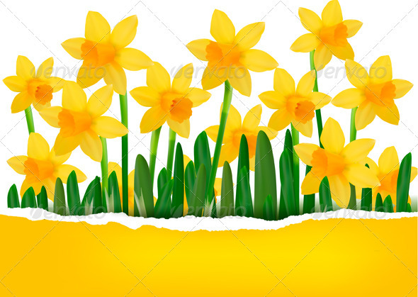 Yellow Flower Background with Ripped Paper - Backgrounds Decorative