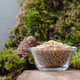 Peeled pine nuts in a glass bowl on a natural background. - PhotoDune Item for Sale