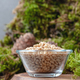 Peeled pine nuts in a glass bowl on a natural background. Vertic - PhotoDune Item for Sale