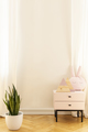 Real photo of an empty wall in a kid room interior with a cabine - PhotoDune Item for Sale