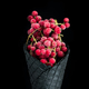 Black wafer cone with frozen redcurrant fruits. Ice cream - PhotoDune Item for Sale