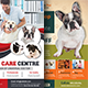 Pet Care Flyers Bundle - GraphicRiver Item for Sale