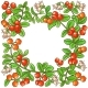 Cranberry Branch Vector Frame - GraphicRiver Item for Sale