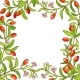 Goji Branch Vector Frame - GraphicRiver Item for Sale