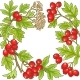 Hawthorn Branch Vector Frame - GraphicRiver Item for Sale