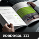 Business Proposal Template III - GraphicRiver Item for Sale