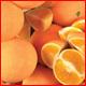 Orange BG - GraphicRiver Item for Sale