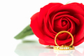 Close up Red roses and gold rings on white_-9 - PhotoDune Item for Sale