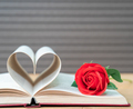 Pages of book curved heart shape and red rose - PhotoDune Item for Sale