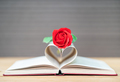 Pages of book curved heart shape and red rose-5 - PhotoDune Item for Sale
