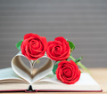 Pages of book curved heart shape and red rose-8 - PhotoDune Item for Sale
