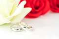 Red rose and wedding ring on white_-11 - PhotoDune Item for Sale