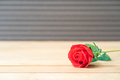 Red rose on the old wood_ - PhotoDune Item for Sale