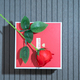 Valentine Day with red box and red roses - PhotoDune Item for Sale