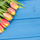 Bouquet of fresh tulips on blue boards, place for text - PhotoDune Item for Sale