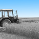 Tractor in a field. - PhotoDune Item for Sale