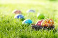 Easter eggs in the nest on green spring grass - PhotoDune Item for Sale