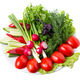 Mixed fresh vegetables. - PhotoDune Item for Sale