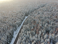 Winter forest with a road on a cold day - PhotoDune Item for Sale