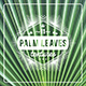 11 Palm Leaves Textures - GraphicRiver Item for Sale