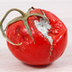 Old moldy tomato, unhealthy and disgusting vegtable - PhotoDune Item for Sale